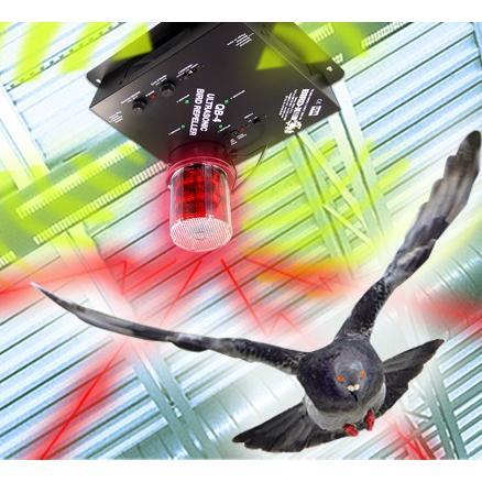 Super QuadBlaster QB-4 ultrahangos madárriasztó
