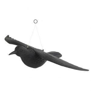 Repülő varjú 58x41x11