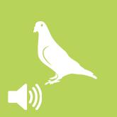 Akusztikus madárriasztók